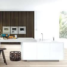 minimalist kitchen cabinets custom kitchen decoration cabinet minimalism kitchen cabinets in kitchen cabinets from home improvement