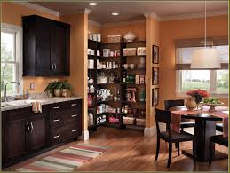 Furniture Kitchen Pantry Cheap Kitchen Pantry For Cheap Pantry Door Ebay With Kitchen