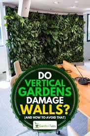 do vertical gardens damage walls and