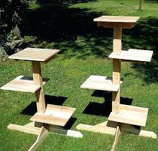 outdoor cat tree house outdoor cat furniture tree house cedar jungle gym and from touchstone pet outdoor cat tree house