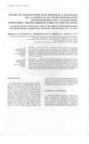 Pdf étude En Microscopie électronique à Balayage De La Femelle De