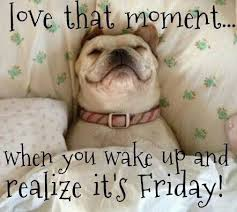 Image result for good morning it's friday