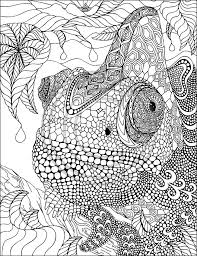Fabulous Phil Lewis Art Coloring Books For Adults Zentangle