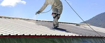 whether it s tiled or corrugated painting your roof is a great way to add value to your home to get the job done properly and safely it s important to