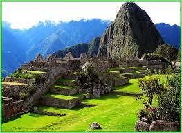 Image result for природа южной америки