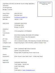 Format Of The Resume Pelosleclaire Com