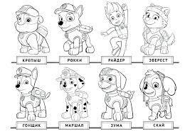 Rubble Paw Patrol Coloring Pages Page Super Spy Chase Colori