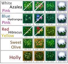 Bush Animal Crossing Animal Crossing Guide Animal