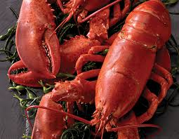 whole lobsters