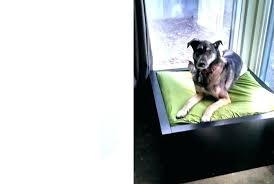 modern dog furniture. Modern Dog Bed Pet Furniture Collection Diy L