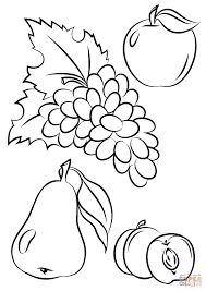 Fruit Coloring Sheet Autumn Fruits Page Free Printable Pages