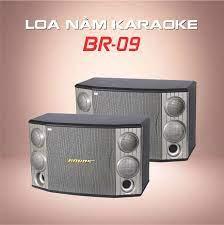 BR-09) LOA NẰM CHUYÊN KARAOKE GIA ĐÌNH BOBOS BR-09 – BobosAudio.com