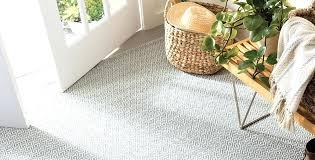 pet friendly rugs best
