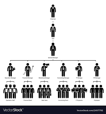 Organization Chart Tree Company Corporate