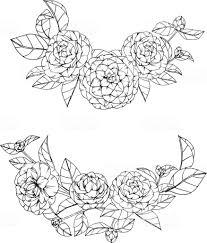 椿の花を描くと白い背景の線画でスケッチ いたずら書きのベクター