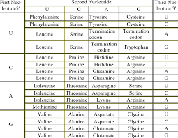 Amino Acid Chart Codon And Amino Acid Comparison Table Download Table