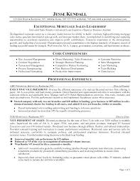 Free Executive Resume Templates Delectable Executive Resume Samples Free Equios