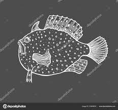 смешные рыбы эскиз стиля раскраска взрослых детей антистресс