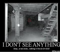 i-dont-see-anything-LOL-pic.jpg via Relatably.com