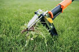 9 best stand up weeder remove weeds