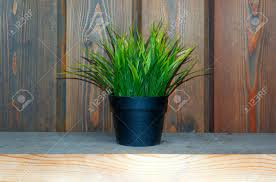 Artifical Grass In Pot On Desk Fake Grass Decor Stock Photo