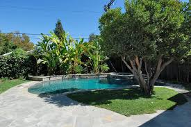 palm tree near pool retaining wall pool traditional with garden wall traditional kids playsets and swing sets