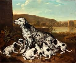 <b>Dalmatian Dog</b> with Puppies - Pieter van der Hulst — Google Arts ...