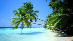 Tropical Beach Desktop Wallpaper ...