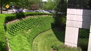 tire retaining wall google search