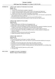 Child Care Assistant Resume Samples Velvet Jobs