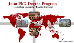 Phd Degree Joint Phd Programme Tohoku Heidelberg