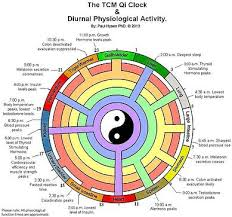 What Is Qi Definition Of Qi In Traditional Chinese Medicine