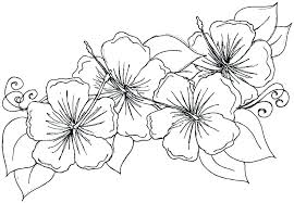 simple flowers coloring pages flower free printable picture colouri