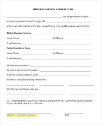 Child Medical Consent Form For Grandparents Child Medical Consent Form For Grandparents Rome Fontanacountryinn Com