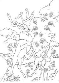 Small Picture Skunk Coloring Pages Interesting Skunk Coloring Page Forest