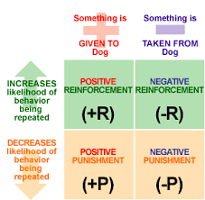 julianna slearningperspective ibpsychology operant conditioning was developed by b f skinner it is slightly easier to understand than classical conditioning skinner created a box for pigeons and