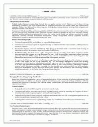 Ceo Resume Samples Awesome Ceo Executive Resume Samples Sample Resume Executive Management