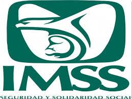 Resultado de imagen para logo IMSS
