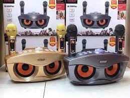 Loa Bluetooth karaoke SDRD SD 306 Plus