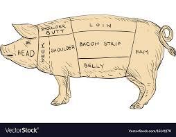 Vintage Pork Meat Cut Map Drawing
