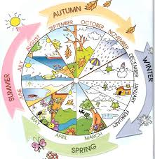 4 Seasons Chart Weather Lessons Tes Teach