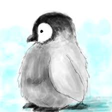 baby penguin drawing. Wonderful Baby Penguins Images Baby Penguin Wallpaper And Background Photos In Drawing L
