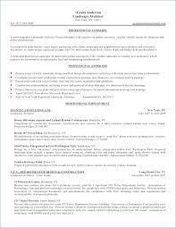 Sales Professional Resume Samples | Kantosanpo.com