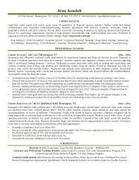 Credit Risk Analyst Credit Analyst Resume Cute Resume Maker Resume