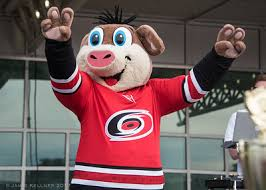 Image result for carolina hurricanes funny images