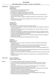 Vp Resume Examples Sales VP Resume Samples Velvet Jobs 9