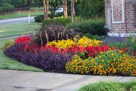 Flower Gardens in the South landscape