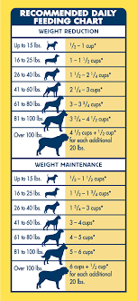 Dog Age Chart By Weight Life Protection Formula Dry Dog Food Healthy Weight Chicken
