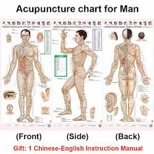 Leg Acupressure Points Chart Standard Meridian Acupuncture Points Chart And Zhenjiu