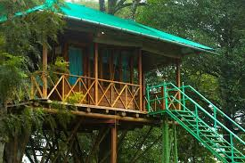 Dream Catcher Kerala Impressive DREAM CATCHER PLANTATION RESORT Munnar Kerala Hotel Reviews